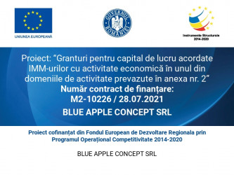 BLUE APPLE CONCEPT SRL