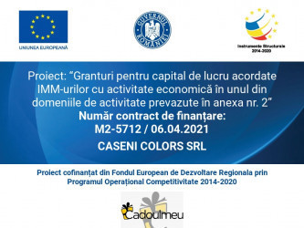 CASENI COLORS SRL