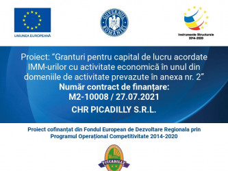 CHR PICADILLY S.R.L.
