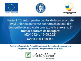 AVIS HOTELS S.R.L.