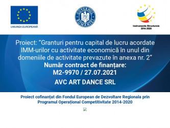 AVC ART DANCE SRL
