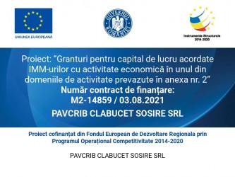 PAVCRIB CLABUCET SOSIRE SRL